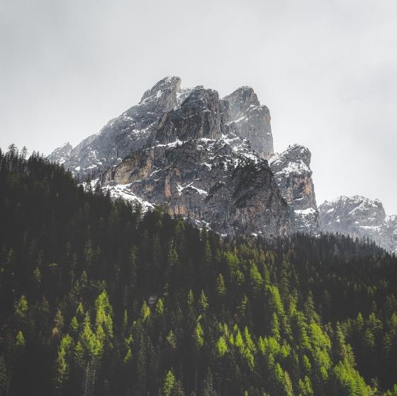 eberhard-grossgasteiger-1601776-unsplash