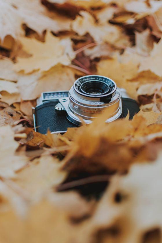 fotografierende-Ng5iP-5DR10-unsplash